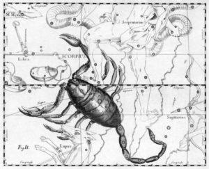 天蠍座 (星座日期:10月23日 ~ 11月22日)