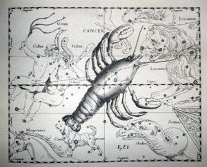 巨蟹座 (星座日期:6月21日 ~ 7月22日)