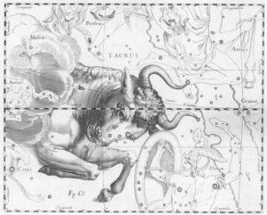 金牛座 (星座日期:4月21日 ~ 5月20日)